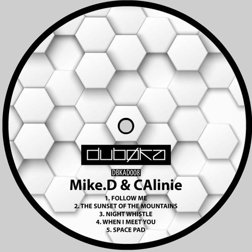 Premiere : Mike.D & CAlinie - When I Meet You ( Dubøka )