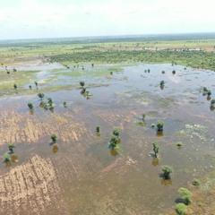 FAO Podcast - Sudan floods: Another shock felt amid existing crises