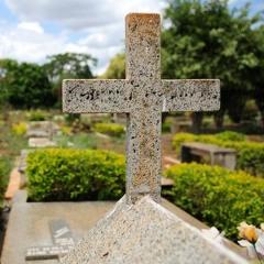Covid-19 mata 600 mil pessoas no Brasil
