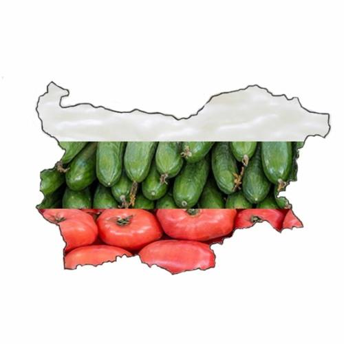 Episode 46: Bulgarien oder Ballaballa-Balkan Brutal