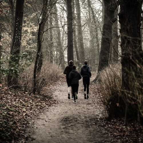 Running Past Trees
