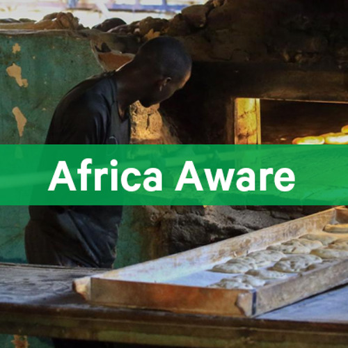 Episode 4: Sudan's Economic Stabilization