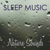 Nature Sounds and Sleep Music - White Noise Background