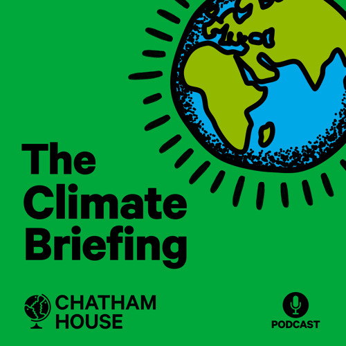 Episode 15: Can the G20 act on climate change?