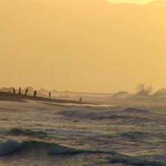 waves 05