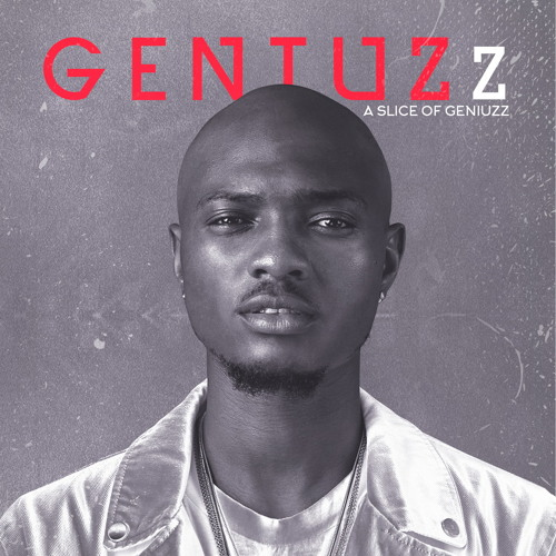 A Slice of Geniuzz