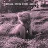 Million Reasons (Andrelli Remix)