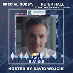 Peter Hall - The Post - Pandemic Spending Splurge