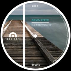 Aidan Knox - Summer Vision (Original Mix)