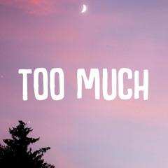 """The Kid LAROI """"Too much"""" remix"""
