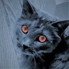 Lowoxy - Paranormal