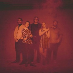 The Besnard Lakes ~ Interviewed on 2SER's Static