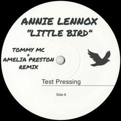 Abbie Webbox - Little Horse (Tommy Mc & Amelia Preston Remix) - HIT BUY 4 FULL FREE DOWNLOAD