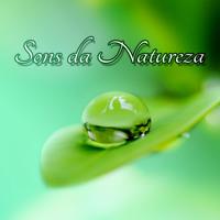 Sons da Natureza