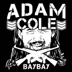 Adam Cole Theme (Bullet Club intro)