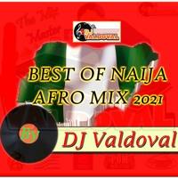 BEST OF NAIJA AFRO MIX 2021 BY DJ VALDOVAL