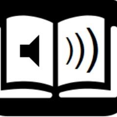 AUDIO LIBRO 2