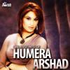Download Aaya Bheega Bheega Sawan Mp3