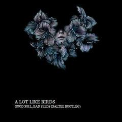A Lot Like Birds - Good Soil, Bad Seeds (Saltee Bootleg)