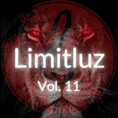 VOLUME 11. Mixed By 'Limitluz'