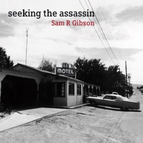 Seeking the Assassin