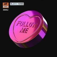 ShockOne - Follow Me (Blanke Remix)