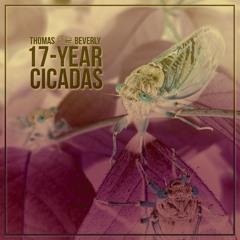 SD29 17-Year Cicadas | Pitch Shifted Demo