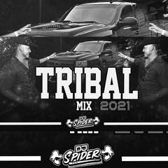 ''Tribal Mix 2021'' Dj Spider pzs