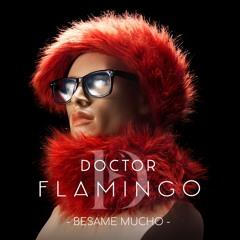 BESAME MUCHO (MAD REMIX FRENCH VERSION)feat. SABINE VAN WAESBERGHE