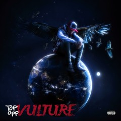Top Opp Vulture
