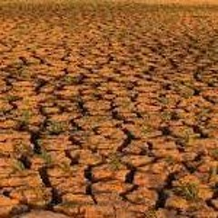 Afrique : impact des extrêmes climatiques sur les populations et le développement