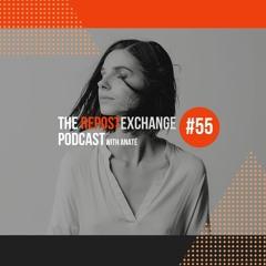Re-Ex Podcast Episode 55: with Anaté