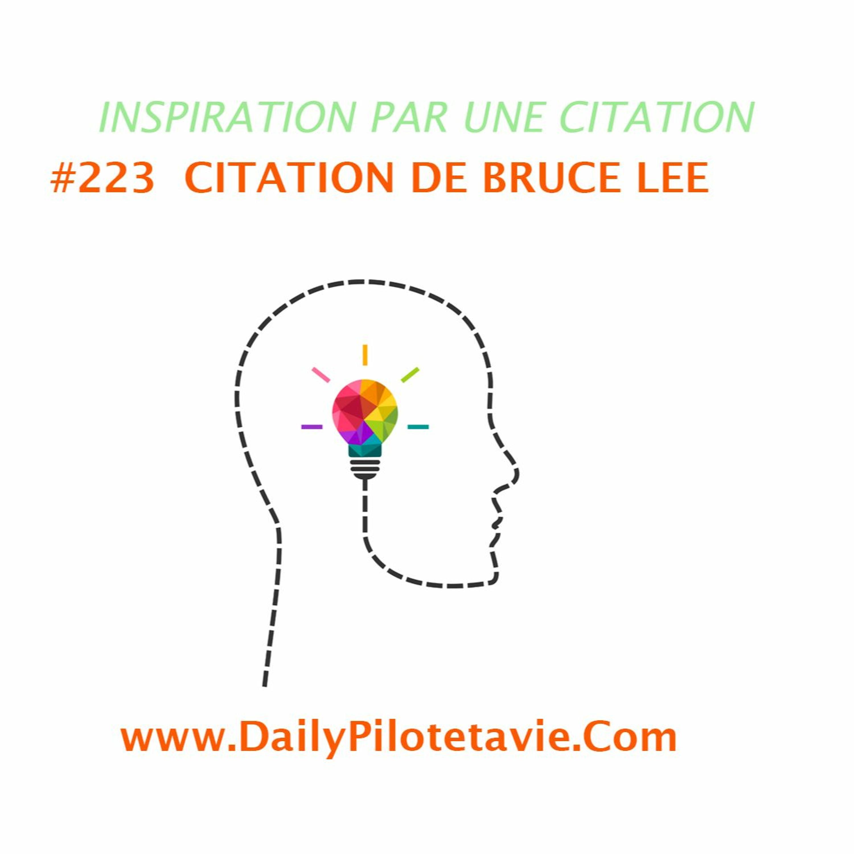 #223 CITATION DE BRUCE LEE
