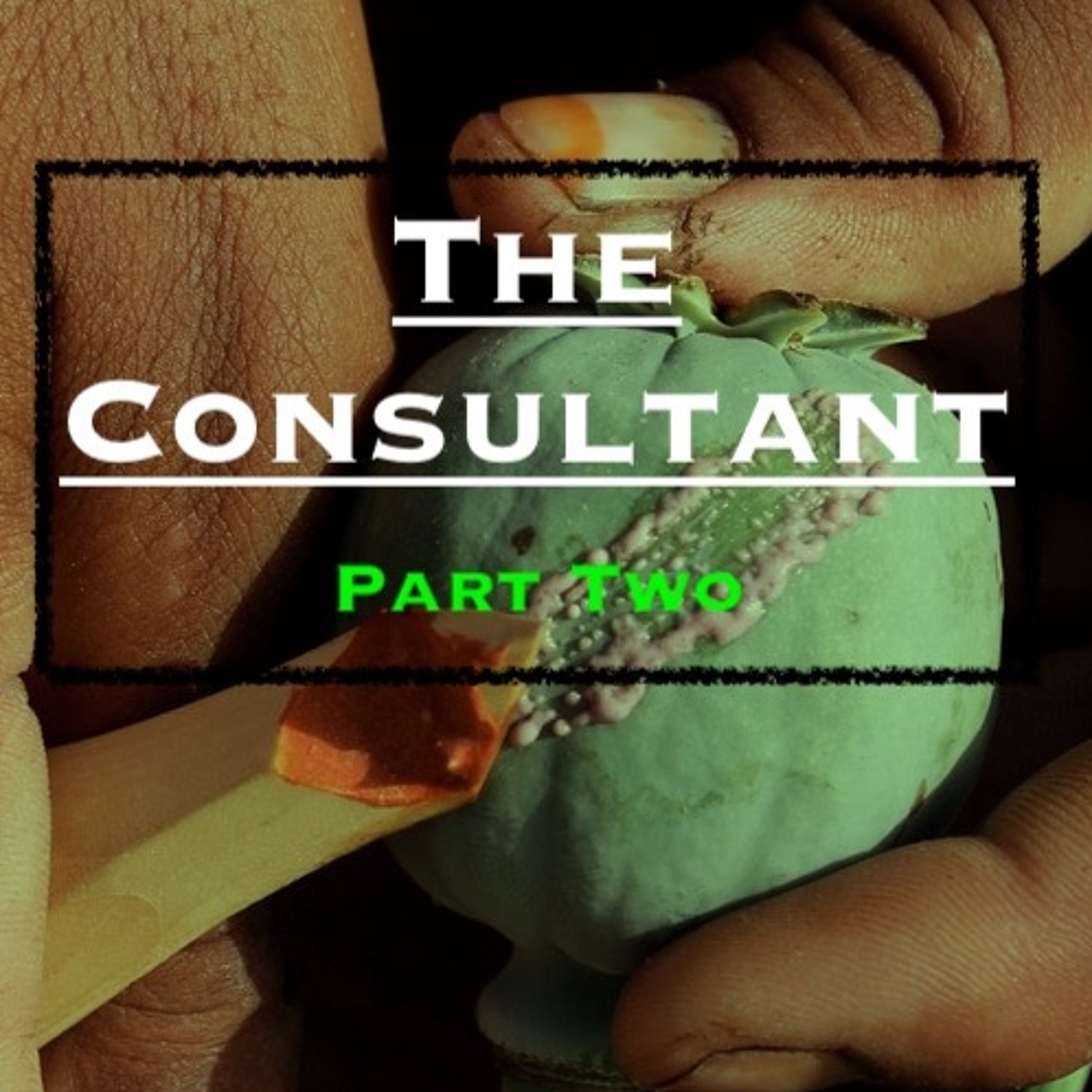 Ep44. 'The Consultant - An International Special Services Provider' - Part 2