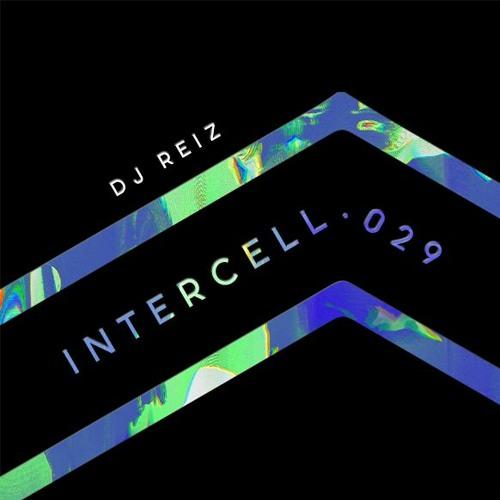 Intercell.029 - DJ Reiz