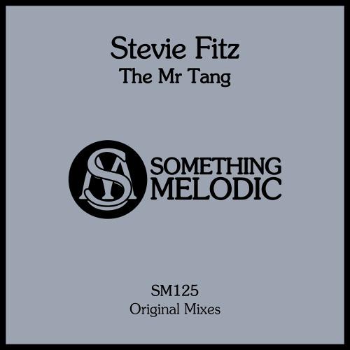 Stevie Fitz - Mr Tang (Original Mix)
