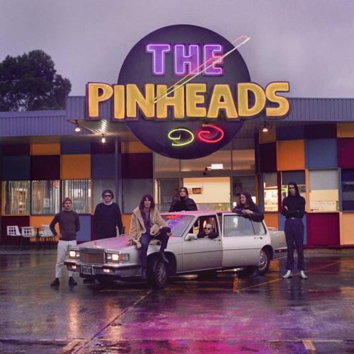 The Pinheads