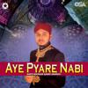Download Nahin Koi Tum Sa Nahin Mp3