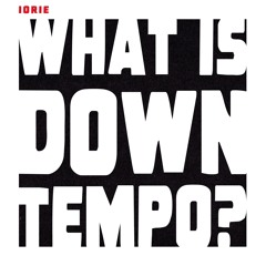 What is Downtempo?