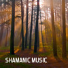 Shamanic Music