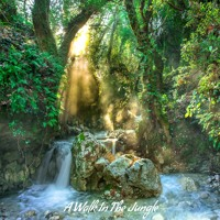 """A Walk In The Jungle"" Music for Meditation, Yoga, Healing and Relaxation"
