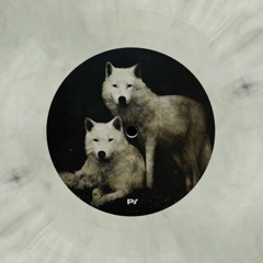 Premiere: Indira Paganotto & Unkle Fon - Dogville (Vinyl Only) [Phase Insane Records]
