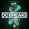 Breathe (Adam F Remix) [feat. Dave Gibson]