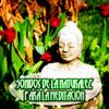 Sonidos de la Naturaleza para la Meditación