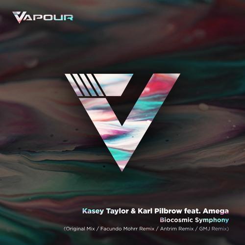 VR149 Kasey Taylor & Karl Pilbrow - Biocosmic Symphony Feat. Amega (Teaser)