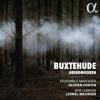 Trio Sonata in A Minor, BuxWV 272