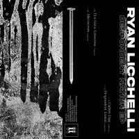 Ryan Licchelli - Carbon Copy [II133D]