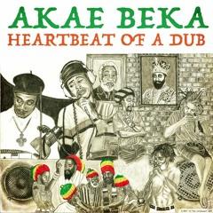Heartbeat of a Dub - Digital Ancient Dub