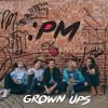 Download Grown Ups Mp3