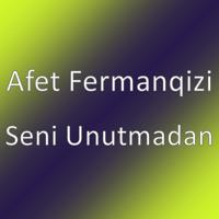 Pencu Ses By Afet Fermanqizi
